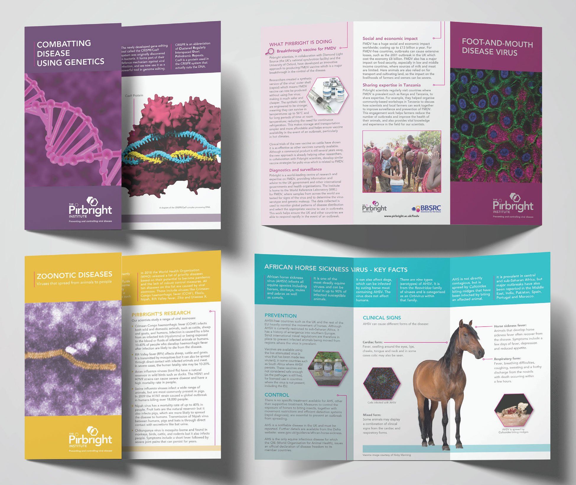 Pirbright Institute - Leaflets design and printing